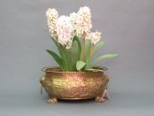 English Regency Jardiniere